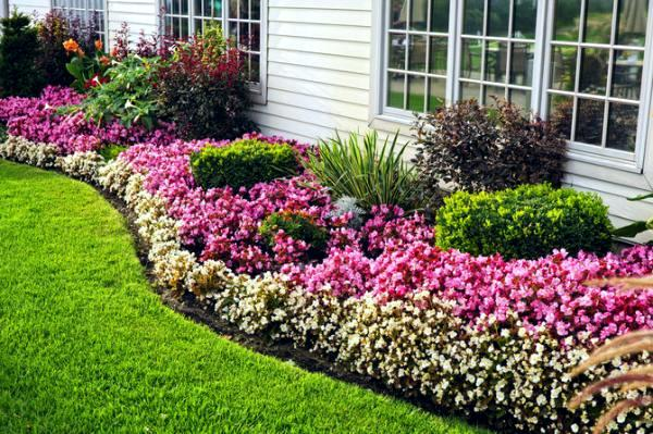 Garden Bed Landscaping Ideas The Gardening