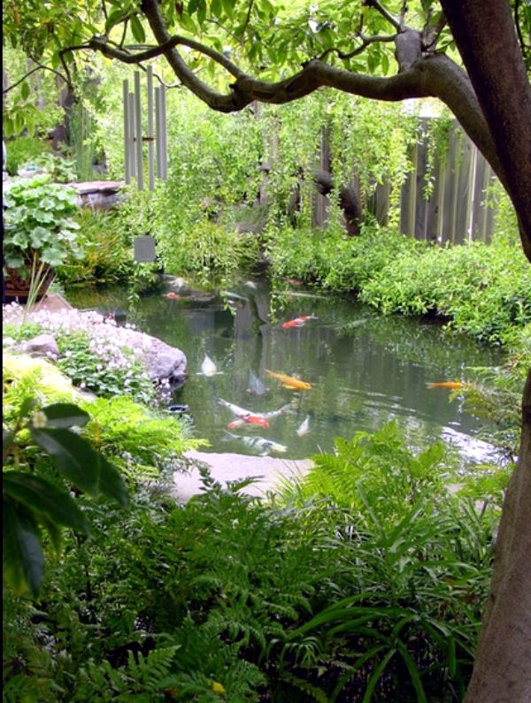 Pond in the backyard using five useful tips to create for Garden pond pump setup