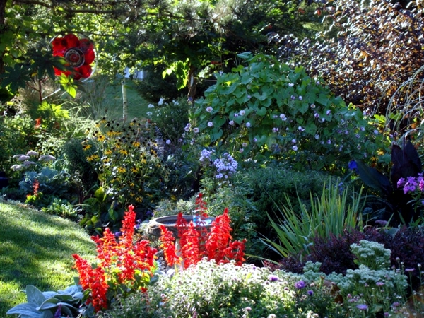 Preparing the garden for winter days - Gardening in autumn