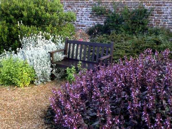 Preparing the garden for winter days - Gardening in autumn