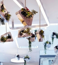 public-art-installations-with-plants-of-alexis-tricoire-0-253353674
