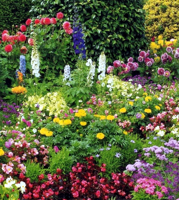 Refresh the garden at home - Ideas for Garden Design