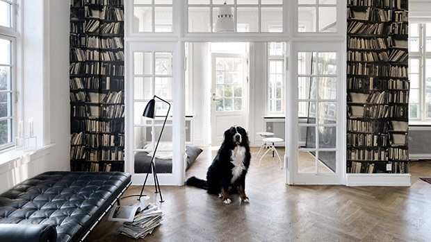 library for modern apartment
