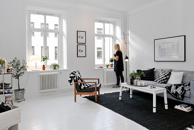 Scandinavian interior deco