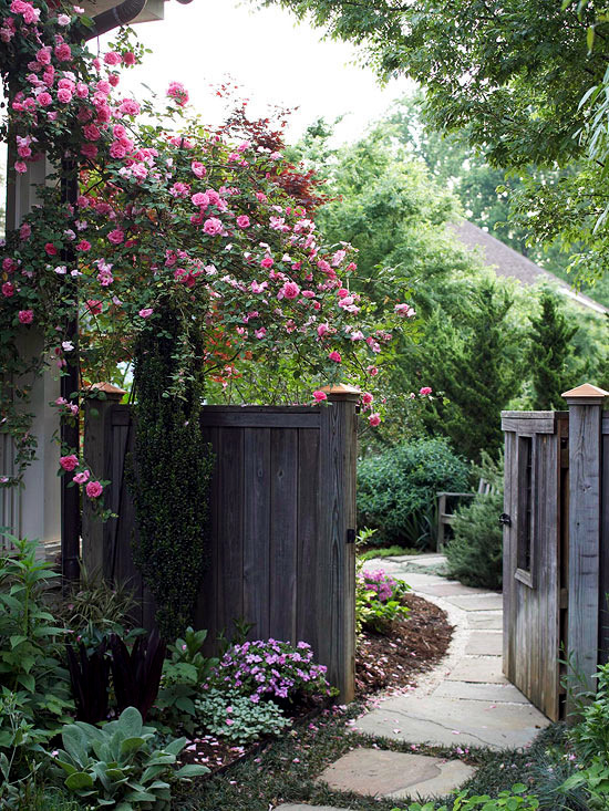 Screening for garden - They shield with flowers and plants from