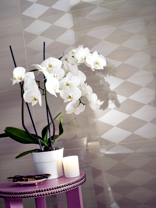 Send Wall tiles in the bathroom with the perfume collection