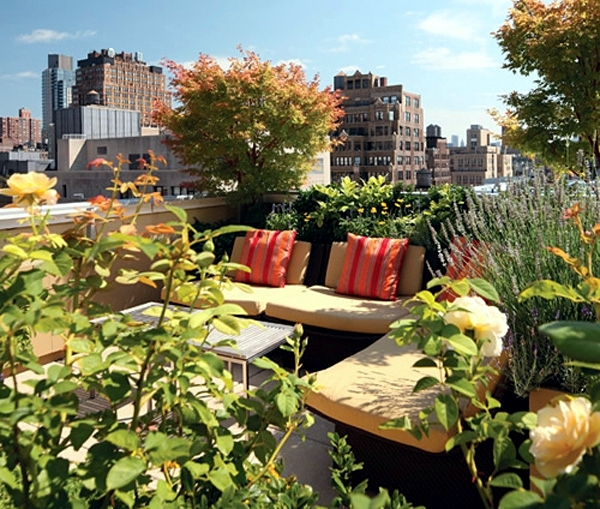 Small urban garden design - garden design ideas for modern