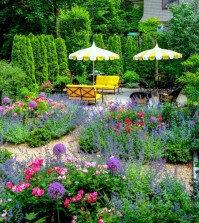 structuring-shrubs-and-trees-in-the-garden-plant-selection-0-967642859