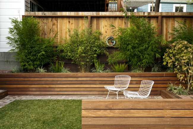 Structuring shrubs and trees in the garden - plant selection