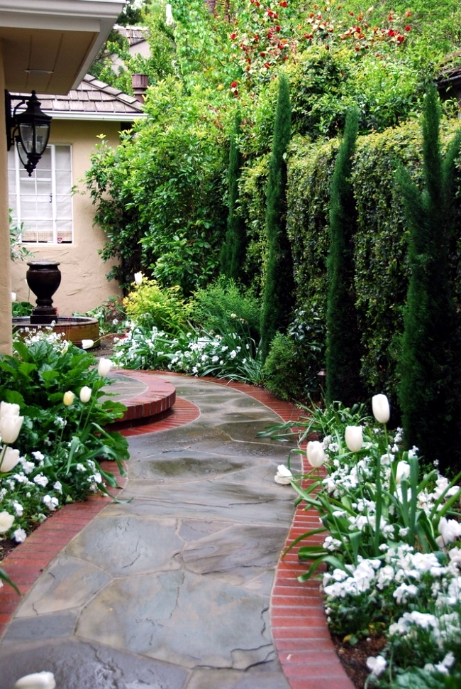 Structuring Shrubs And Trees In The Garden – Plant Selection