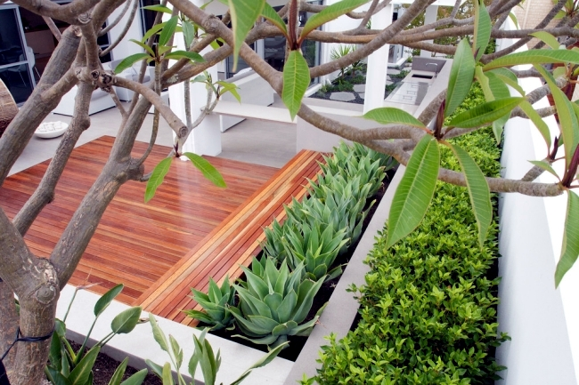 Structuring shrubs and trees in the garden u2013 plant selection | Interior Design Ideas - Ofdesign