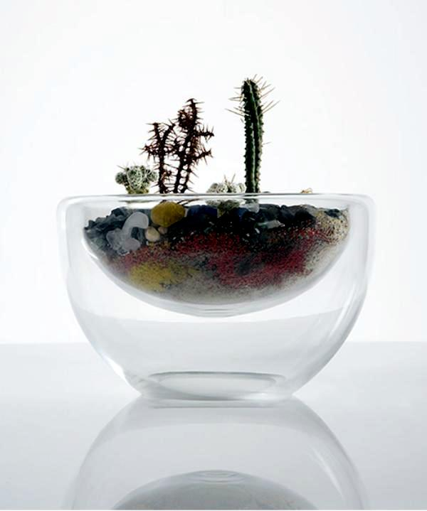 Terrarium designs serve as decorative mini garden in the interior