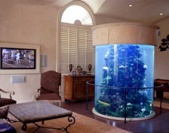 The aquarium set up as a decorative element in home for Aquarium decoration set