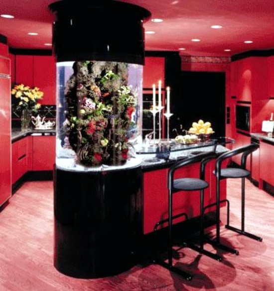 Home Aquarium Design Ideas: The Aquarium Set Up As A Decorative Element In Home