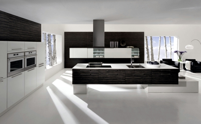 The Cult And Neos Kitchen Designs With Wooden Elements Of Rational Interior Design Ideas