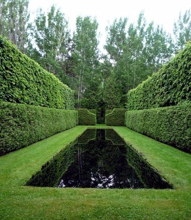The Landscape Gardener: 33 Tricks With Water Level