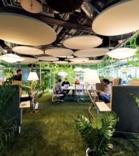 the-google-headquarters-in-ireland-behind-the-scenes-0-244411078