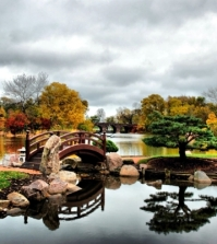 the-perfect-harmony-of-japanese-gardens-0-380155495