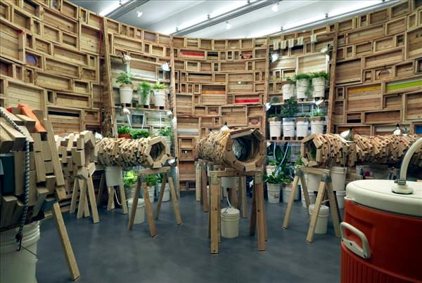 The wood recycling in the art installations of Phoebe Washburn