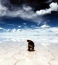 top-10-hidden-beauties-and-outstanding-destinations-in-the-world-0-1146623179