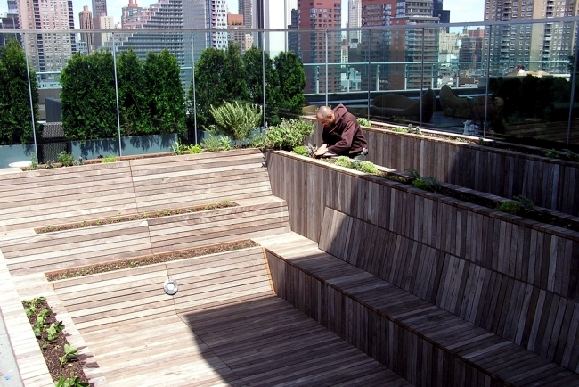 Transformation of a pool in an herb garden on the roof terrace