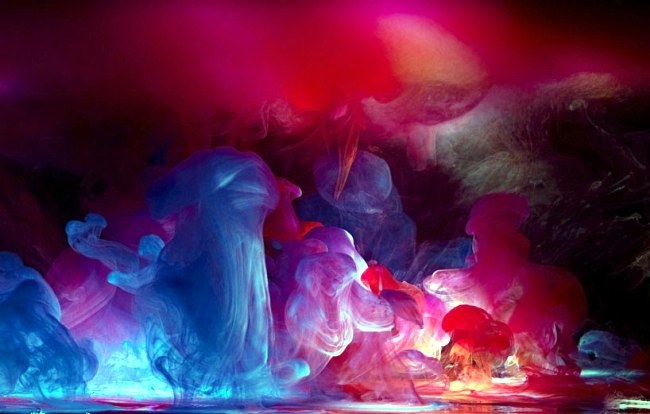 Underwater Photos by Mark Mawson you dive into a world of color