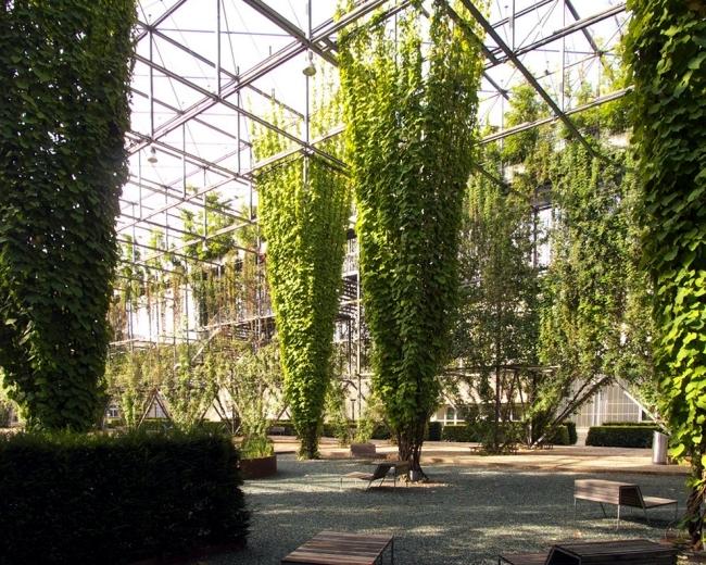 Urban Gardening - an important part of urban planning and development