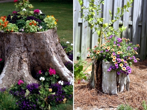 Use old items in new interior 19 decorating ideas from for Tall tree stump ideas