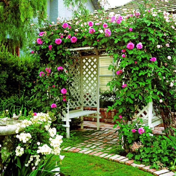 Vertical Gardens And Landscaping Ideas For Garden
