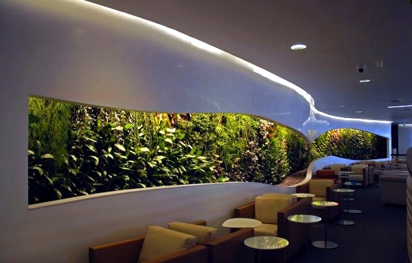 Vertical Gardens Inside And Outside Big Future For Wall