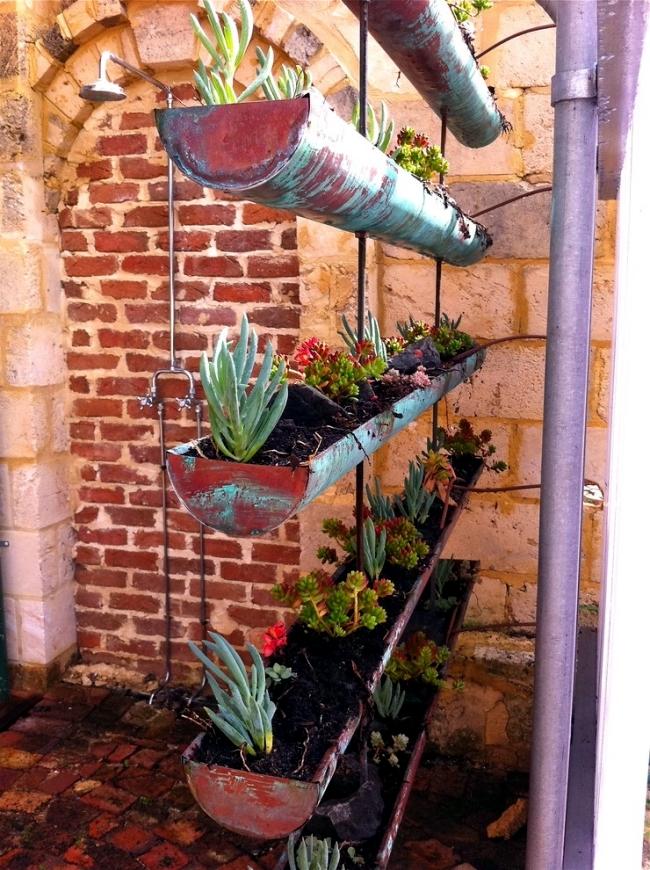 Vertical gardens provide a delightful retreat in the backyard