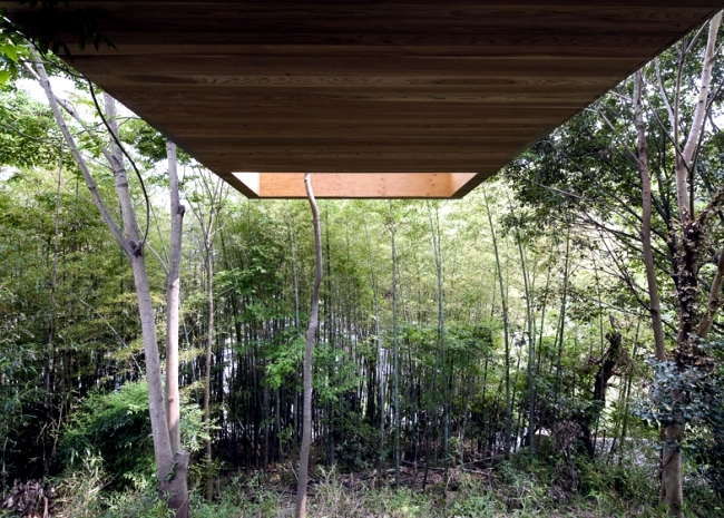 Wooden house in the forest floats in the air - Draft UID Architects